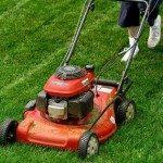 Cách sử dụng máy cắt cỏ