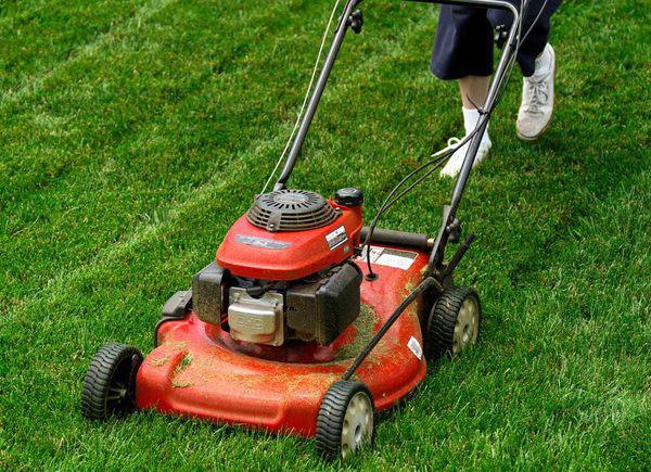 Các loại máy cắt cỏ tùy chọn